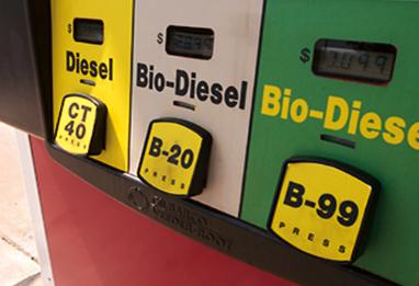 American Biofuel & Bio Diesel