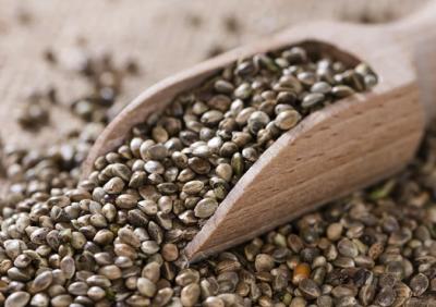 American Hemp Seeds Organic